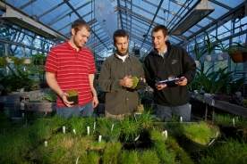SUNY Delhi Greenhouse - Turfgrass Management