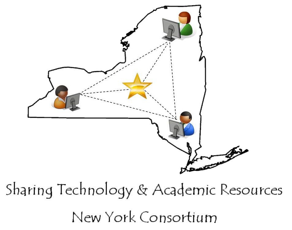 Star New York Online Tutoring