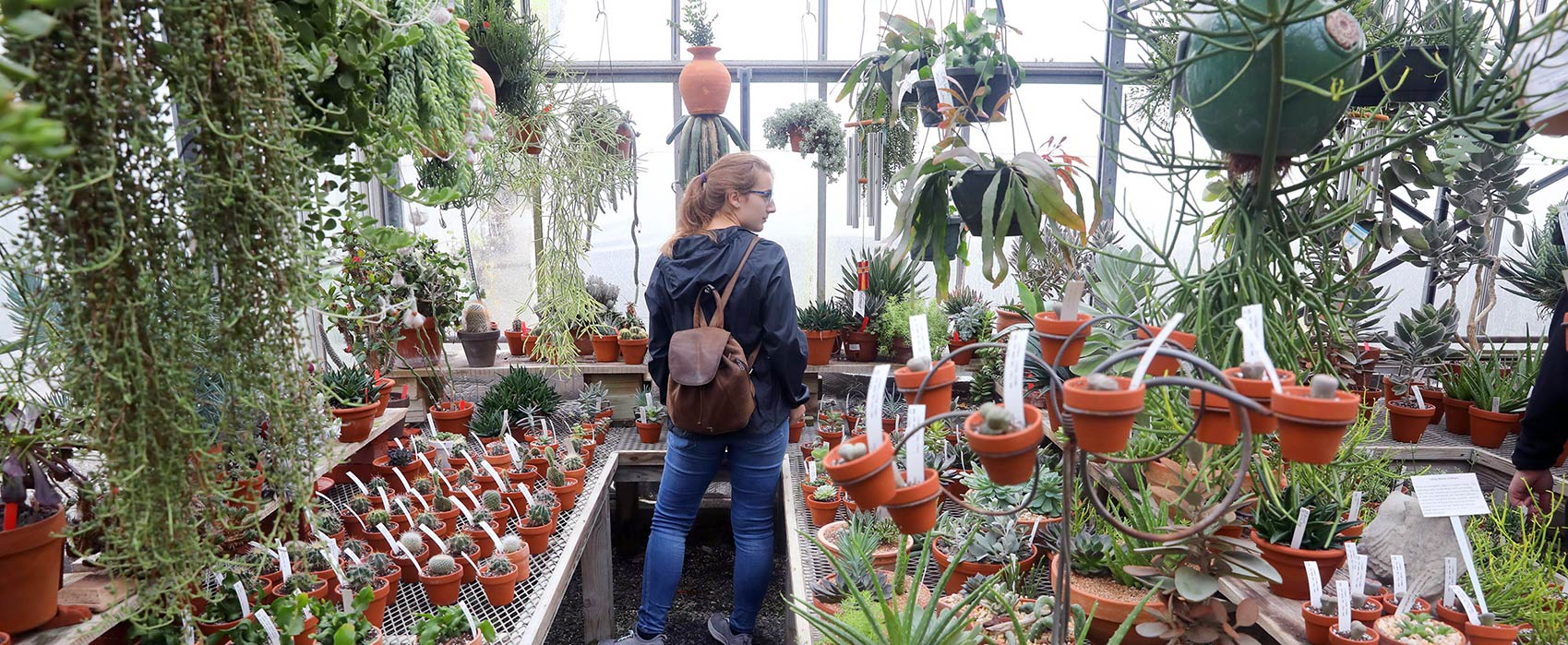 Student exploring campus greenhouse