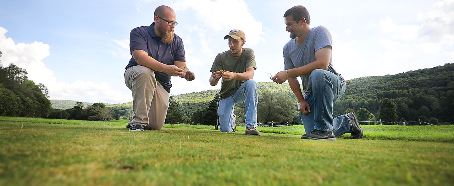 Professor and two students examining golf course turf.