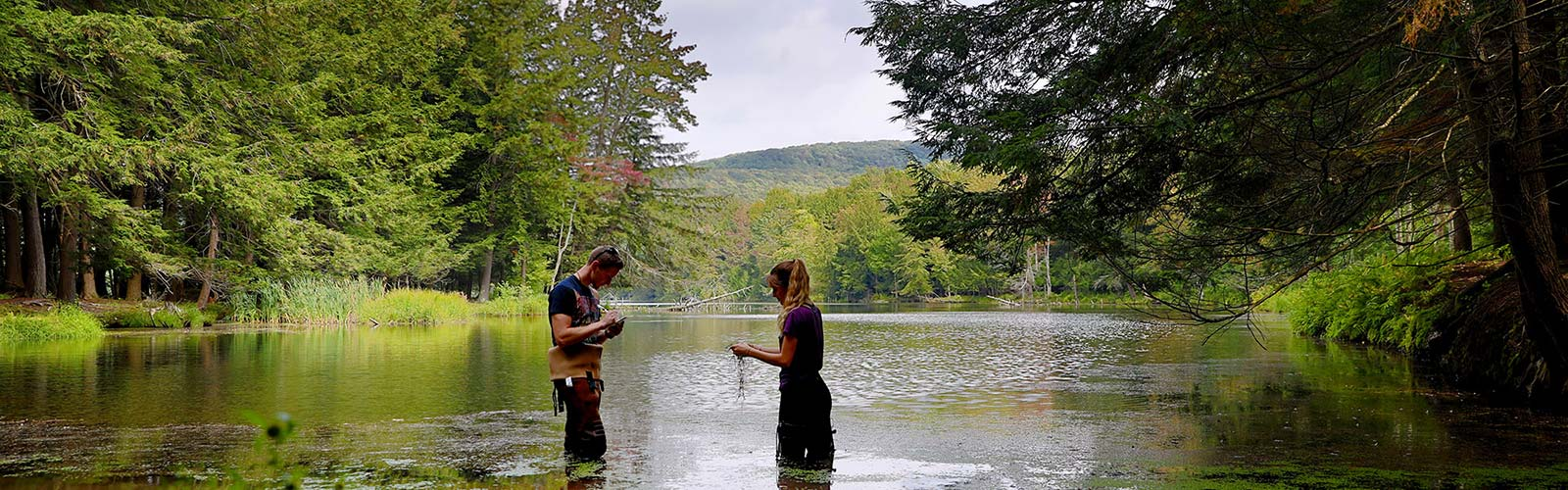 Students in lake gathering water samples